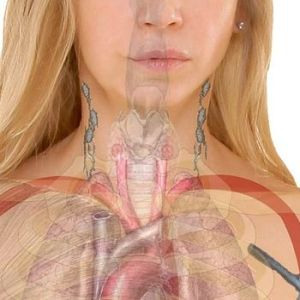 hypothyroidism diet healthline.com